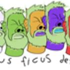 micusficus
