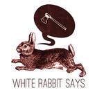 whiterabbitsays