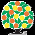 The Department Of Citrus