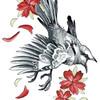 busymockingbird