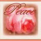 artist4peace