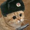 SargeSparta