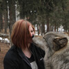 wolfdefender01