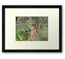 'THAT'S QUITE ENOUGH OF THAT!' Boxing lessons. Framed Print
