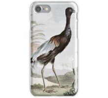 Trumpeter Bird Painting iPhone Case/Skin