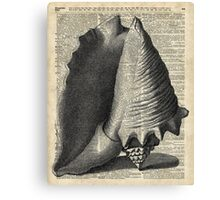 Black And White Vintage Sea Shell Engraving on Dictionary Page Background Canvas Print