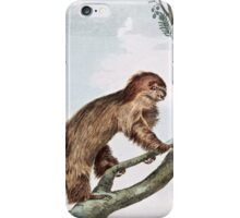 Two Toed Sloth iPhone Case/Skin
