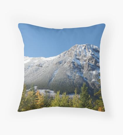 Dusting Throw Pillow