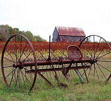 Tobacco Barn #1 by Eileen McVey
