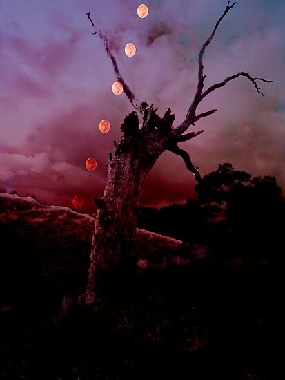 Moon Rise by Andrew (ark photograhy art)