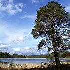 Loch Gamhna by Sally J Hunter