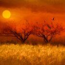 Autumn Impression by TOM YORK
