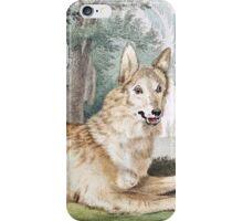White Wolf Vintage Art iPhone Case/Skin