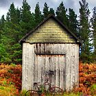 HDR Shed by Sam Smith