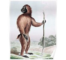Wood Baboon with Walking Stick Poster
