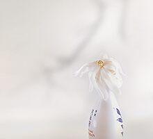 Nice In White Satin (2) by John Poon