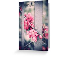 A delicate Spring Greeting Card