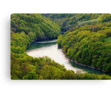 The Rhône river through the forest Canvas Print