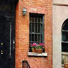 Chelsea Windowbox by Susan Savad