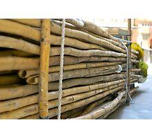 Bamboo I Photographic Print