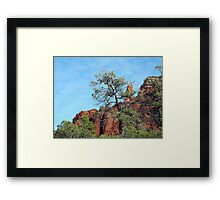 Tall Trees, Rocky Spires Framed Print