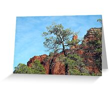 Tall Trees, Rocky Spires Greeting Card