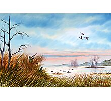 The Duck Hunters Companion Photographic Print