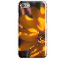 Autumn Shadows iPhone Case/Skin
