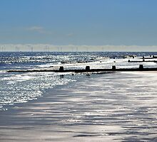 Glistening Shore by Bel Menpes