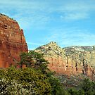 Spring in Sedona by Lynda Lehmann
