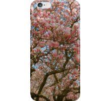Springtime in Washington DC - 2  ^ iPhone Case/Skin