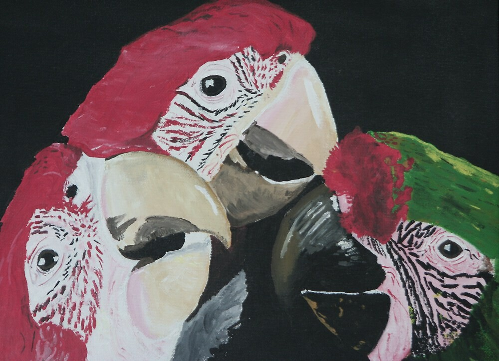 3 Macaws by Rebecca Lee Means