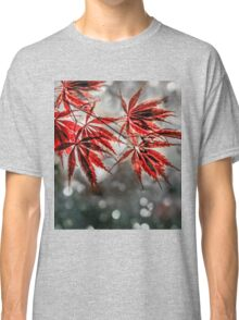Japanese Red Maple Leaves  Classic T-Shirt
