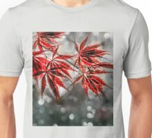 Japanese Red Maple Leaves  Unisex T-Shirt