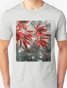 Japanese Red Maple Leaves  T-Shirt