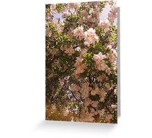 Breath of Fresh Air Greeting Card