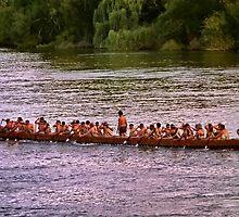 Maori Regatta in  Ngaruawahia, New Zealand  by AnnDixon