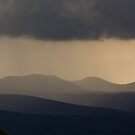 Layers, Evening Rain - Shenandoah National Park, VA by Matthew Kocin