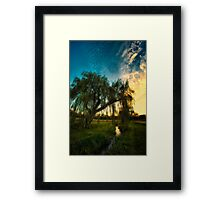 Weeping Willow Tree Sunset Framed Print