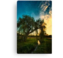 Weeping Willow Tree Sunset Canvas Print