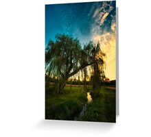 Weeping Willow Tree Sunset Greeting Card