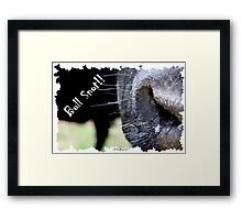 Bull Snot!! - Not just an exclamation anymore! Framed Print