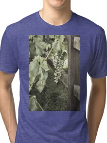 Single Vine Tri-blend T-Shirt