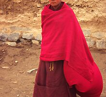 Young Buddhist monk by Jenny Hall