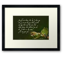 Set to bear fruit ~ John 15:16 Framed Print