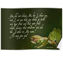 Set to bear fruit ~ John 15:16 Poster