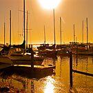 Dawn @ Goolwa Marina, Australia by Ali Brown