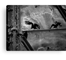 vultures in alligator alley Canvas Print