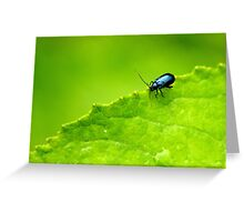 Small Life..Big World Greeting Card