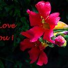 I Love You! by Heather Friedman